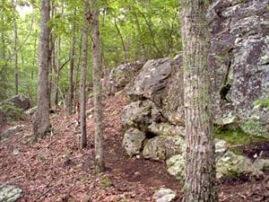 Cherokee Ridge Alpine Trail 2
