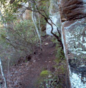 Deadening Trail 6