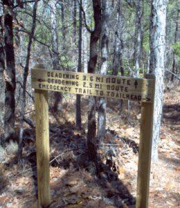 Deadening Trail 8
